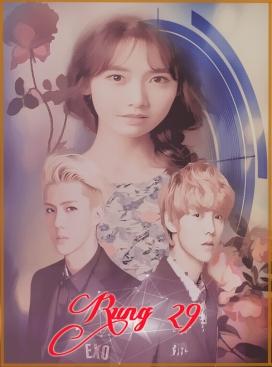 rung 29